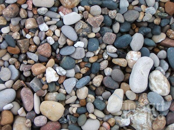 Pebbles Photograph - Wet Pebbles by Margaret McDermott
