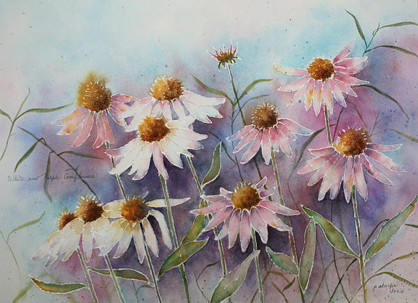 Floral Painting - White And Pink Coneflowers by Patsy Sharpe