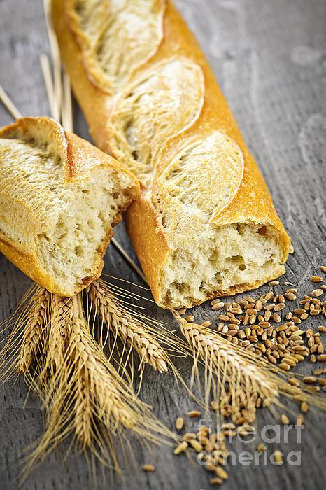 Bread Photograph - White Baguette by Elena Elisseeva