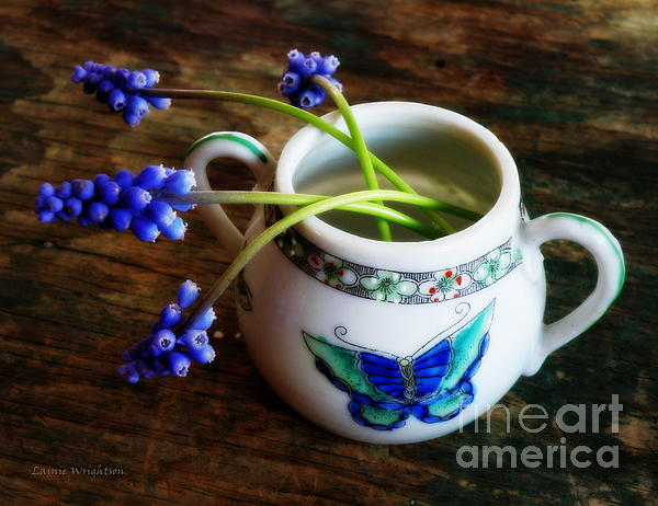 Wild Flowers Photograph - Wild Flowers In Sugar Bowl by Lainie Wrightson