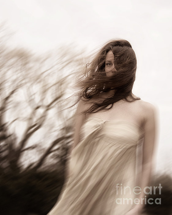 Caucasian; Woman; Lady; Female; Outside; Outdoors; Storm; Stormy; Wind; Windy; Blur; Blurred; Blurry; Horror; Scary; Mysterious; Mystery; Foreboding; Hair; Long Hair; Brunette; Dress; Gold; Strapless; Haunted; Scared; Terror; Trees; Autumn; Spring; Branches Photograph - Windy by Margie Hurwich