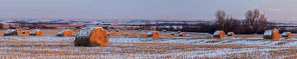 Blue Sky Photograph - Winter Bales by Scott Bean
