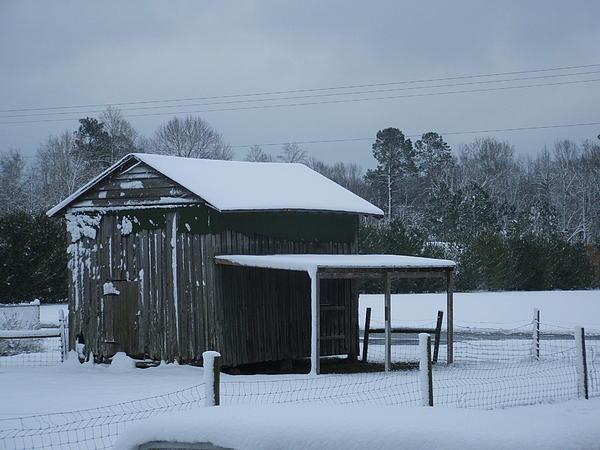 Barn Photograph - Winter Barn by Nelson Watkins