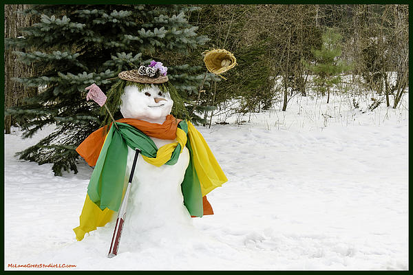 Snowman Photograph - Winter Baseball Ball Gown  by LeeAnn McLaneGoetz McLaneGoetzStudioLLCcom