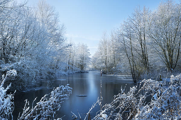 Blue Photograph - Winter Beauty by Svetlana Sewell