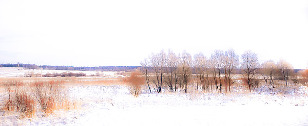 Winter Photograph - Winter Fields. In Color by Jenny Rainbow