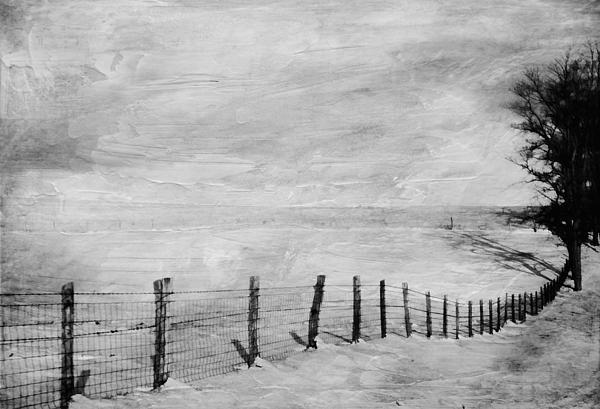 Winter Photograph - Winter Haze by Kathy Jennings