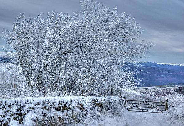 Winter Photograph - Winter Landscape Near Buxton by David Birchall