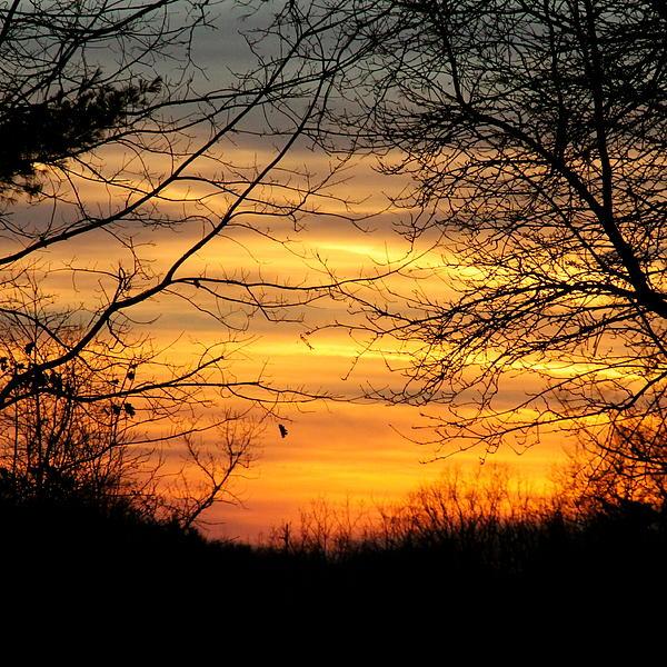 Sunrise Photograph - Winter Orange  by Justin Connor