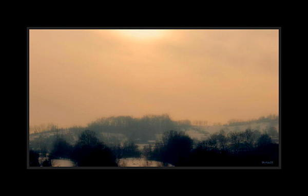 Nature Photograph - Winter Sun 2 by Marija Djedovic