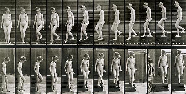 Woman Descending Steps Photograph - Woman Descending Steps by Eadweard Muybridge