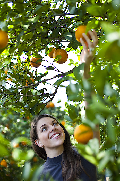 Woman In Orange Orchard Photograph by Pam McLean