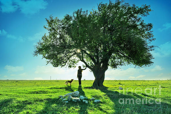 Women Photograph - women and dog and Beautiful Greens by Boon Mee