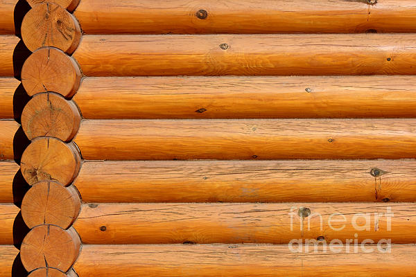 Abstract Photograph - Wooden Logs Wall Background by Kiril Stanchev