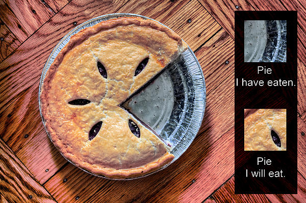 Worlds Most Accurate Pie Chart Photograph - Worlds Most Accurate Pie Chart by JC Findley