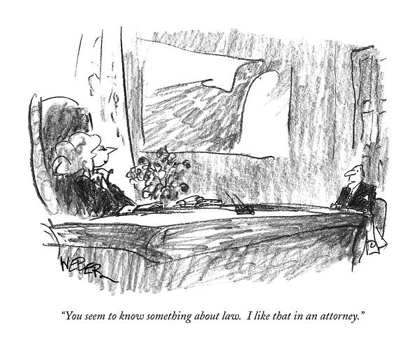 You Seem To Know Something About Law.  I Like Drawing by Robert Weber