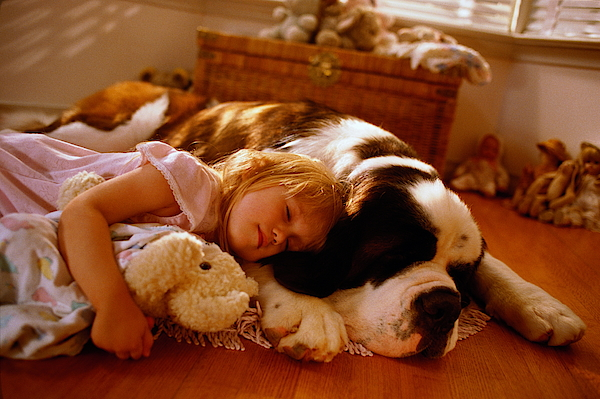 Young Girl (4-6) Lying On Floor With Dog, Sleeping Photograph by Charles Thatcher