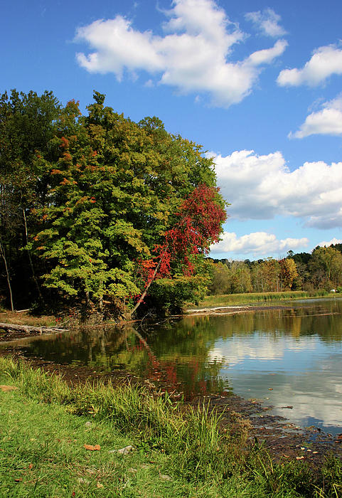 Lake Photograph - A Touch Of Autumn by Kristin Elmquist