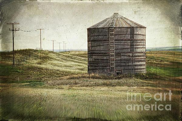 Abandoned Photograph - Abandoned Wood Grain Storage Bin In Saskatchewan by Sandra Cunningham
