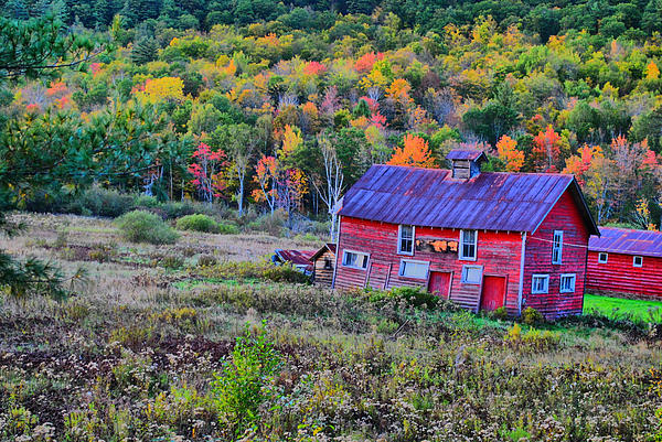 Adirondack Photograph - Adirondack Charm  by Emily Stauring