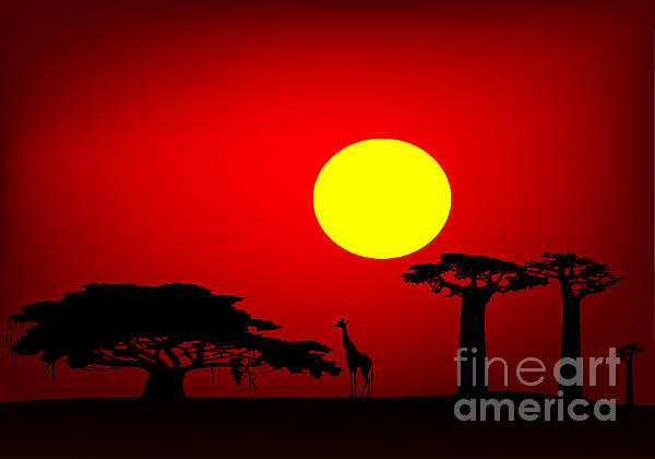 Africa Digital Art - Africa Sunset by Michal Boubin