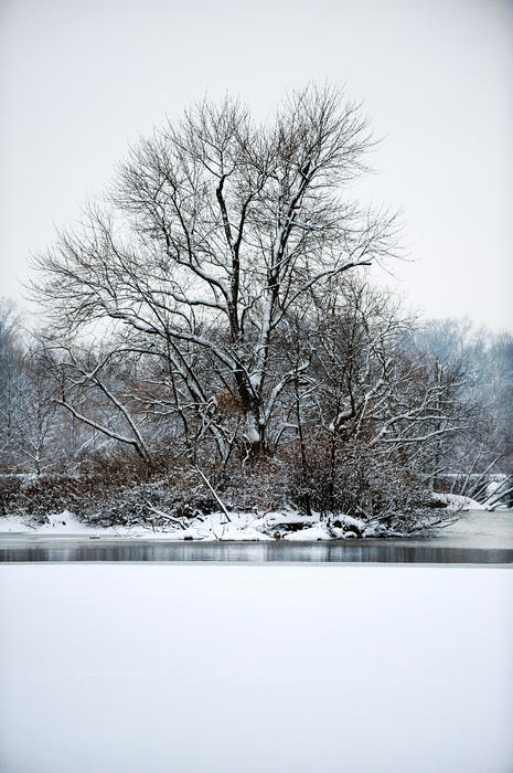 Winter Photograph - Carnegie Lake by Frank DiGiovanni
