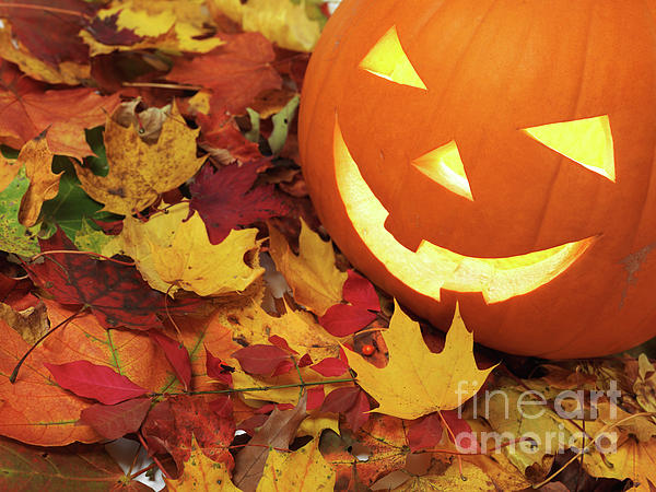 Halloween Photograph - Carved Pumpkin On Fallen Leaves by Oleksiy Maksymenko