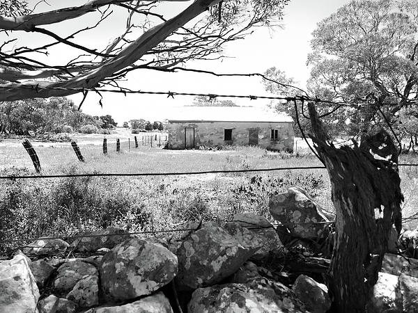 Country Cottage Photograph - Country Cottage by Douglas Barnard