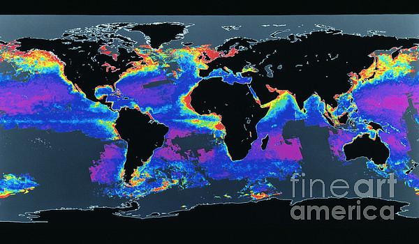 Algal Bloom  - False-col Satellite Image Of Worlds by Dr. Gene Feldman, NASA Goddard Space Flight Center