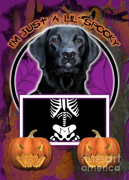 Labrador Digital Art - Im Just A Lil Spooky Labrador by Renae Laughner