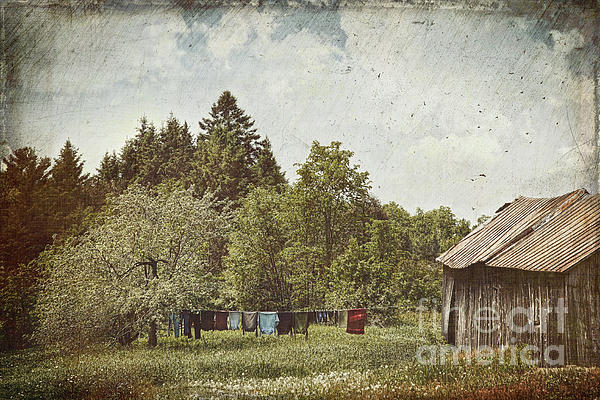 Air Photograph - Laundry Drying On Clothesline On A Summer Day by Sandra Cunningham