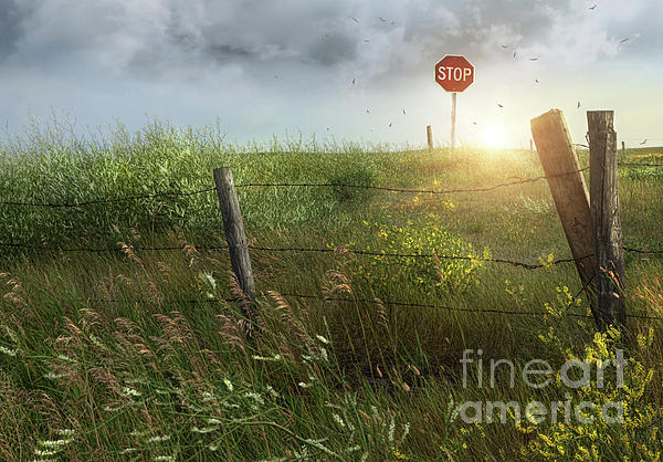 Beautiful Photograph - Old Country Fence On The Prairies by Sandra Cunningham