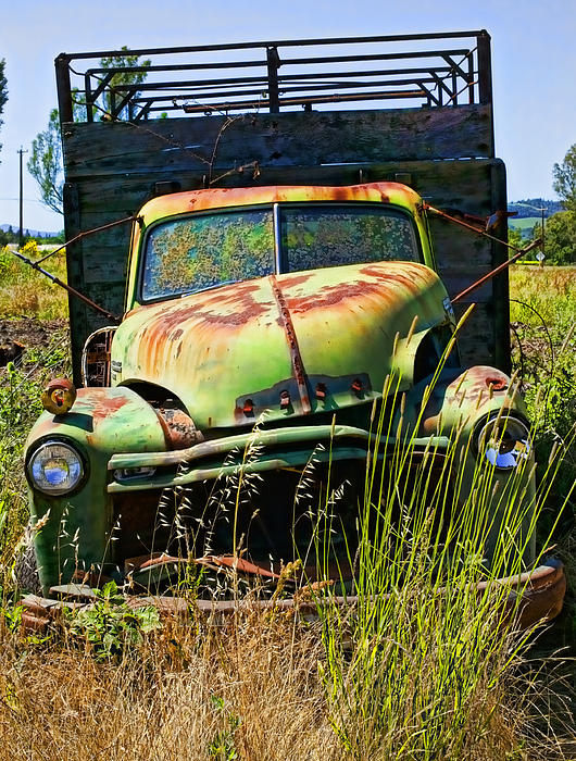 Green Photograph - Old Green Truck by Garry Gay
