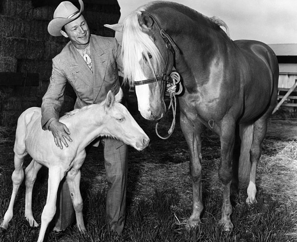1950s Photograph - Roy Rogers 1911-1998, American Actor by Everett