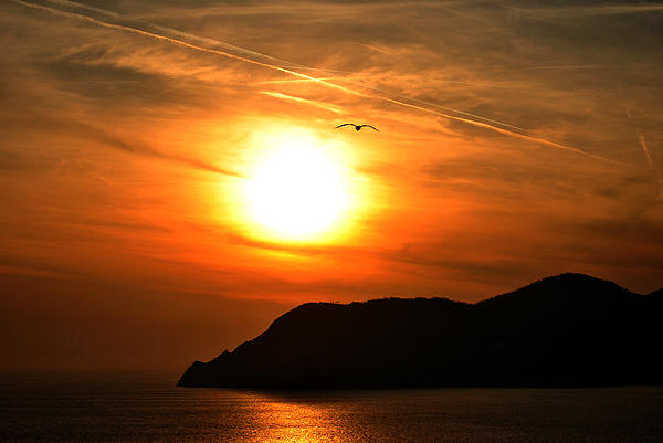Sunset In The Village Corniglia Photograph by Neha Singh