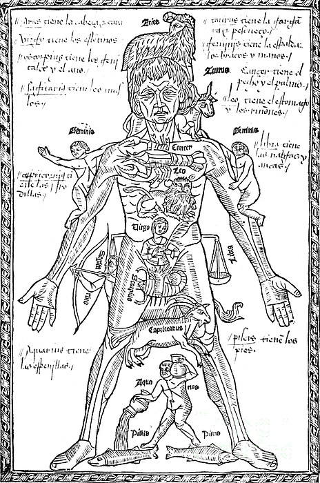 Science  - Zodiac Man, Medical Astrology by Science Source