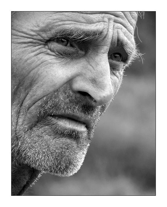 50 Photograph - Portrait by Odon Czintos