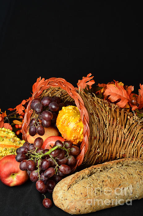 Thanksgiving Photograph - Cornucopia  by Timothy OLeary
