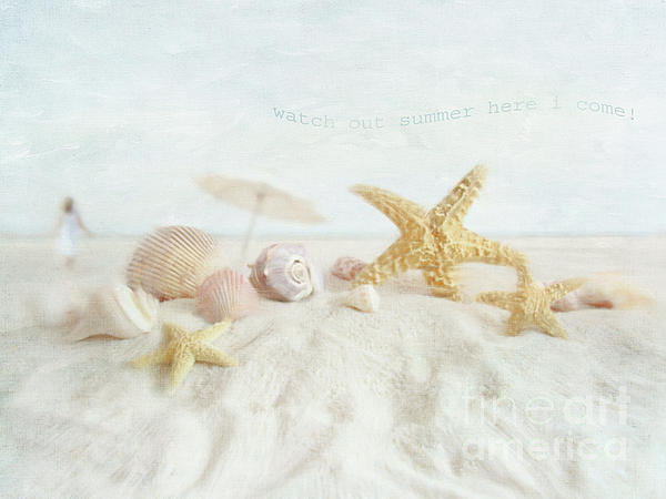 Starfish And Seashells  At The Beach Photograph by Sandra Cunningham