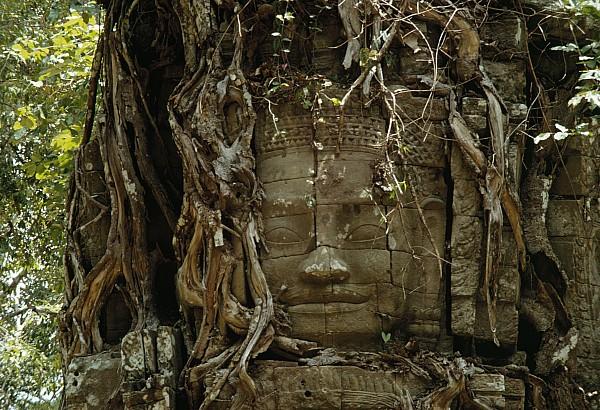Asia Photograph - Untitled by W.E. Garrett