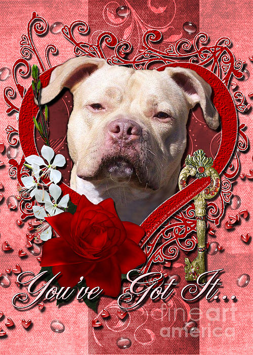Pitbull Digital Art - Valentines - Key To My Heart Pitbull by Renae Laughner