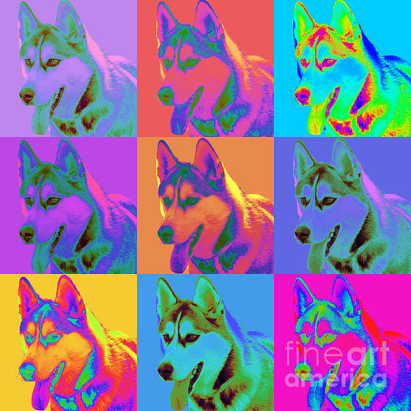 Siberian Husky Digital Art - Pop Art Siberian Husky by Renae Laughner