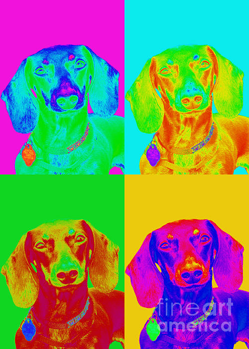 Dachshund Digital Art - Pop Art Dachshund by Renae Laughner