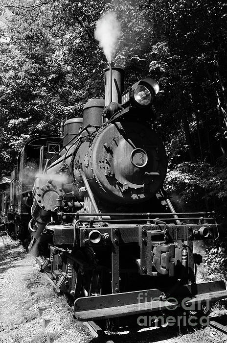 Pocahontas County Photograph - Climax Geared Locomotive by Thomas R Fletcher