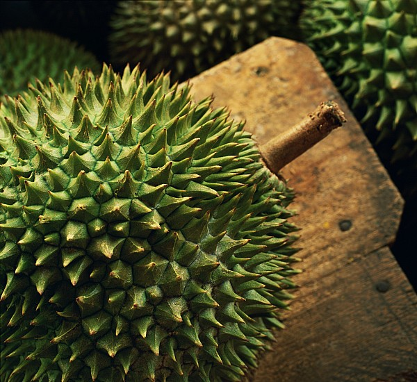 One Object Photograph - A Durian Fruit - Popular In South East by Justin Guariglia