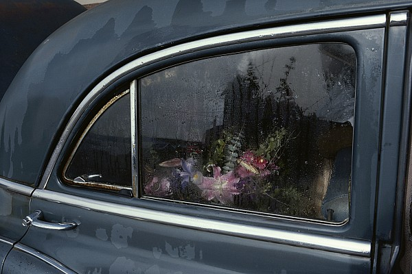 North America Photograph - A Floral Arrangement Seen by Sam Abell