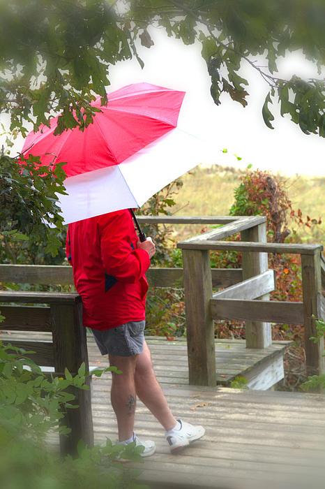 Rain Photograph - A Rainy Summers Day by Karol Livote