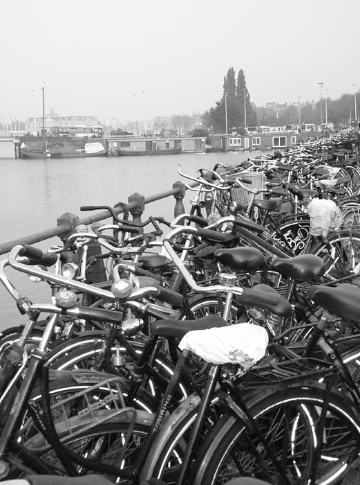Bike Photograph - Amsterdam Bikes by Erica Ross