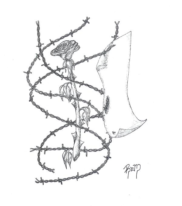 Rose Drawing - An Abstract Rose - Sketch by Robert Meszaros