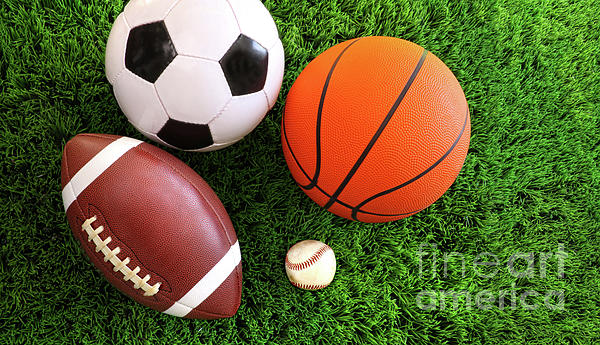 Ball Photograph - Assortment Of Sport Balls On Grass by Sandra Cunningham